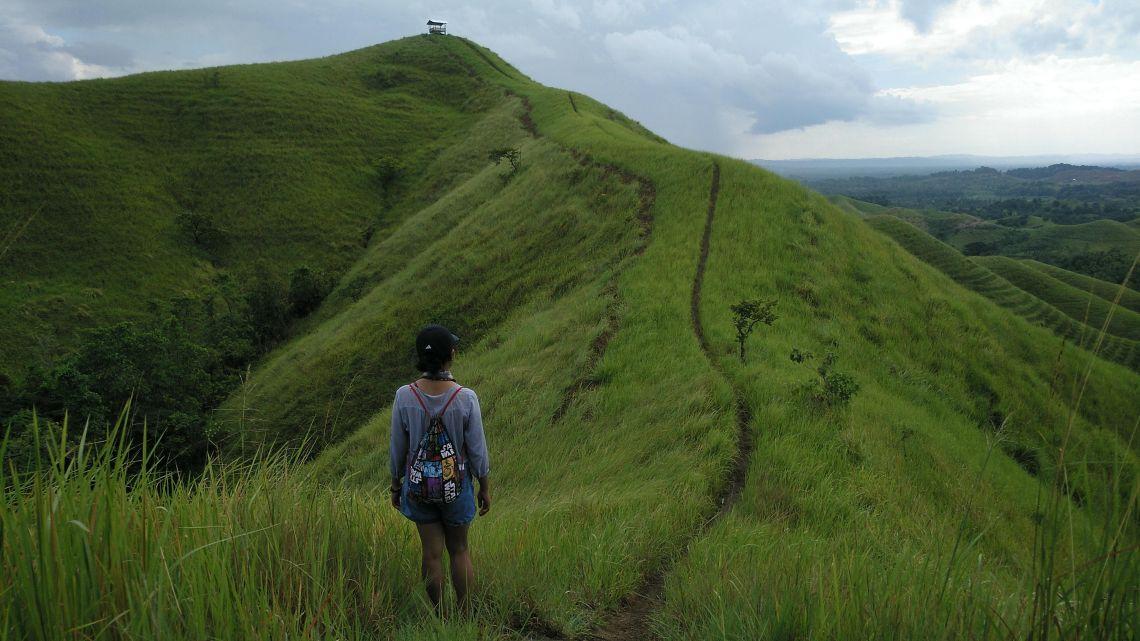 alicia hills 3